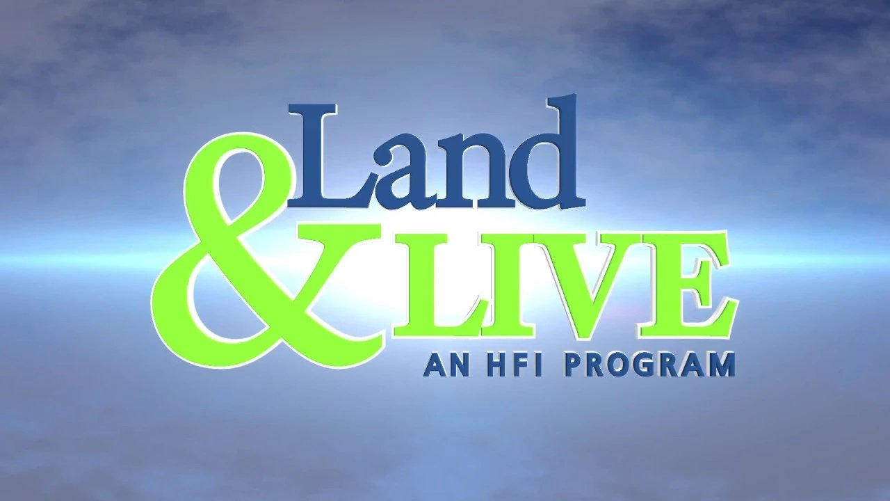 Land and Live Critical Decisions (HAI)